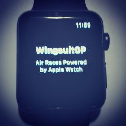 WingsuitGP
